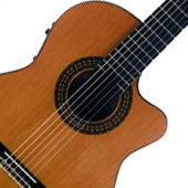 Electroclassical Guitars