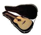 Acoustic Guitar Cases