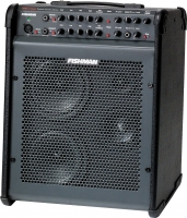 FISHMAN Performer 130W